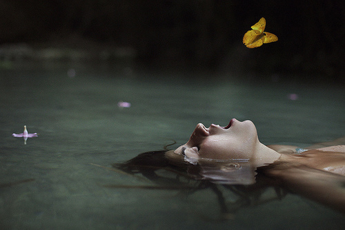butterfly, fall, and girl image