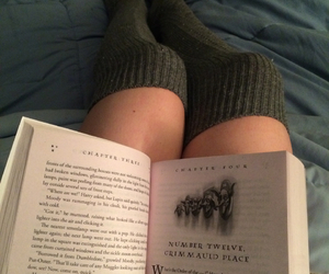 books, dumbledore, and grey image