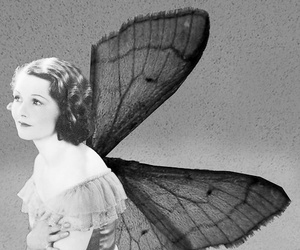 vintage and wings image