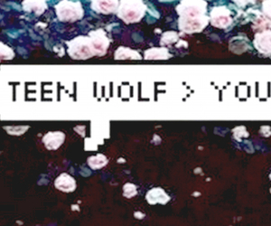 flowers, you, and teen wolf image