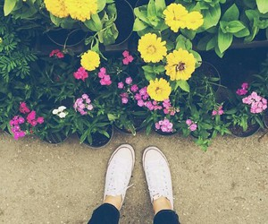 color, flower, and shoes image