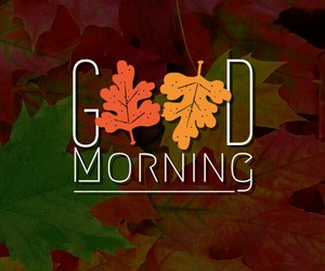 fall, good morning, and autumn image