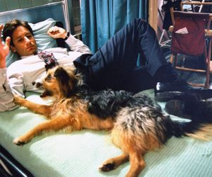 david duchovny, dog, and x files image
