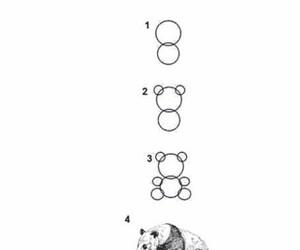 funny, panda, and art image