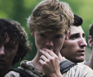 newt, cute, and love image