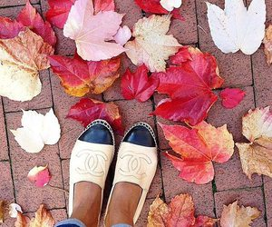 chanel, autumn, and shoes image