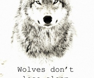 wolf, sheep, and quotes image