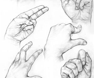 anatomy, how to draw hands, and art image