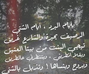 فيروز, برد, and شتاء image