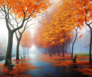autumn, tree, and orange image