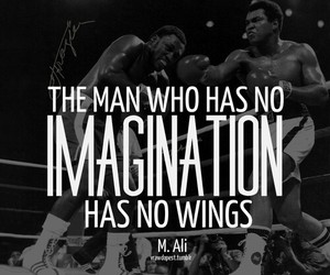 quotes, imagination, and wings image