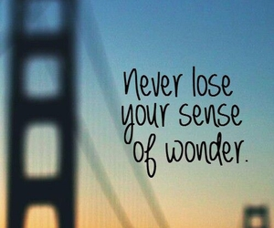 quotes, wonder, and travel image