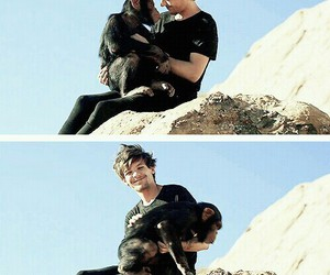 one direction, monkey, and louis tomlinson image