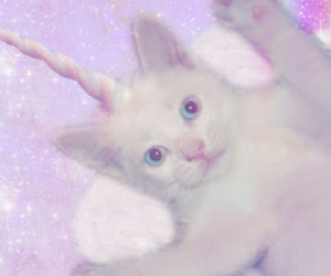 cat, unicorn, and pastel image