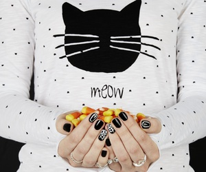 candy corn, cat, and delias image
