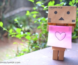 danbo, photo, and cute image