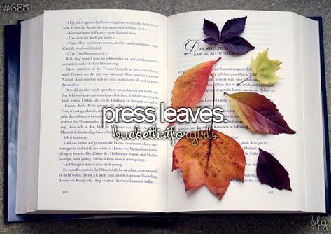 autumn, girly, and bucketlist image