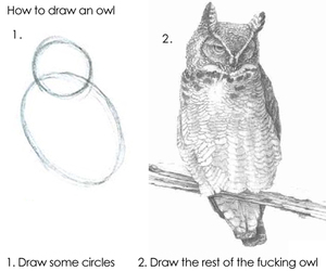 owl, draw, and funny image