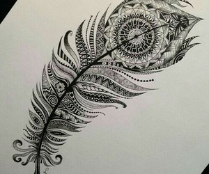 drawing, art, and feather image