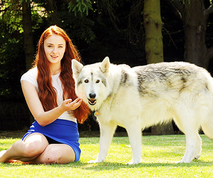 sophie turner, sansa, and game of thrones image