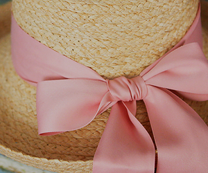 hat and bow image