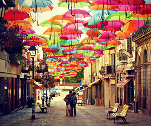 umbrella, portugal, and colors image