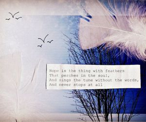 feather, hope, and text image