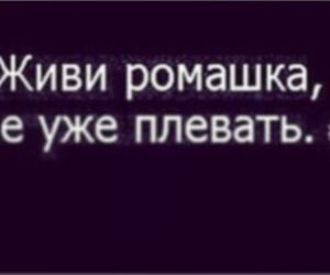 love hurt flower russian image