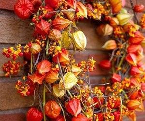autumn, wreath, and fall image