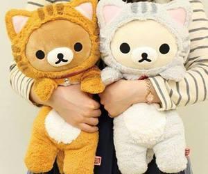 rilakkuma, kawaii, and cat image