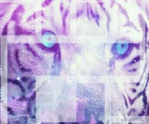 cool, roar, and raawr image
