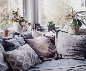 room, home, and cozy image