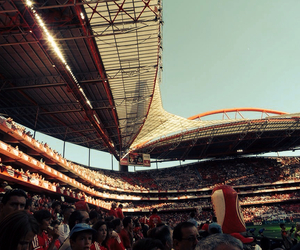 slb, campeao, and benfica image