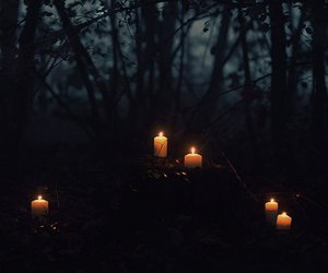 candles, trees, and woods image