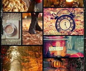 autumn, season, and winter image