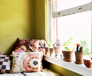 bed, pillow, and plants image
