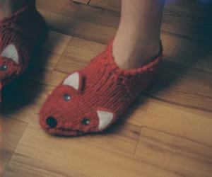 fox and socks image