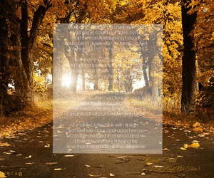 autumn, fall, and poem image