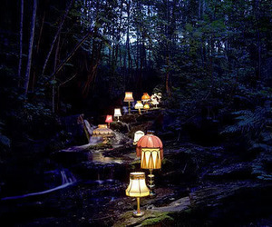 light, lamp, and forest image