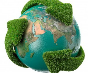 wold green image