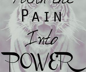 Lyrics, tiger, and pain image