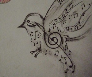 bird and music image