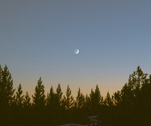 moon, sky, and tree image