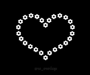 black & white, flowers, and heart image