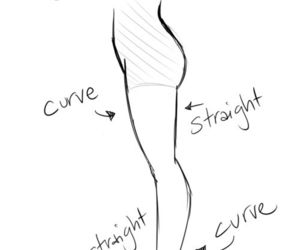 anatomy and how to draw image