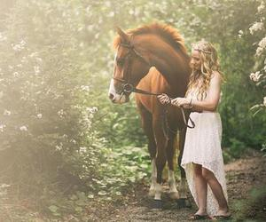 horse, nice, and sweet image