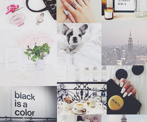background, chanel, and city image