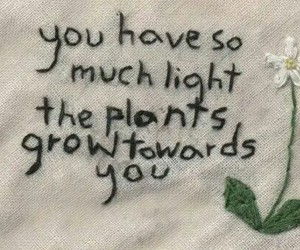 quotes, plants, and flowers image