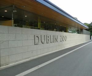 beautiful, ireland, and dublin zoo image