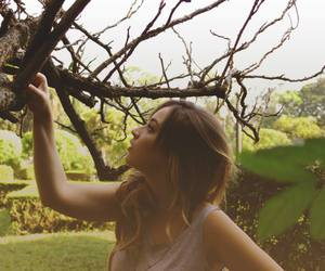 beauty, branches, and girl image